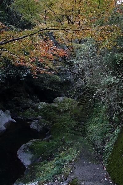 仙波渓谷紅葉 161112 03