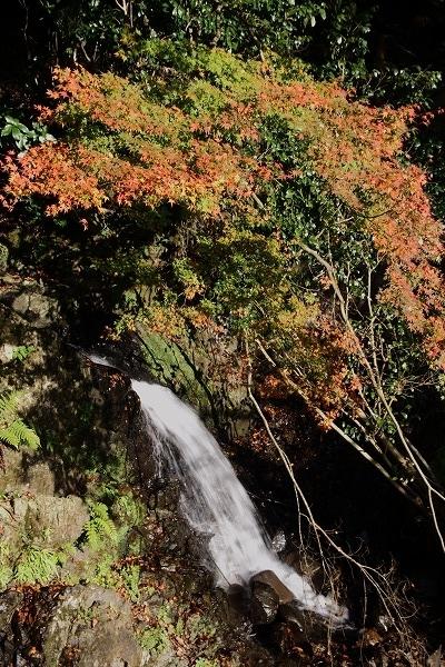 奥松瀬川水越地区紅葉 161126 06
