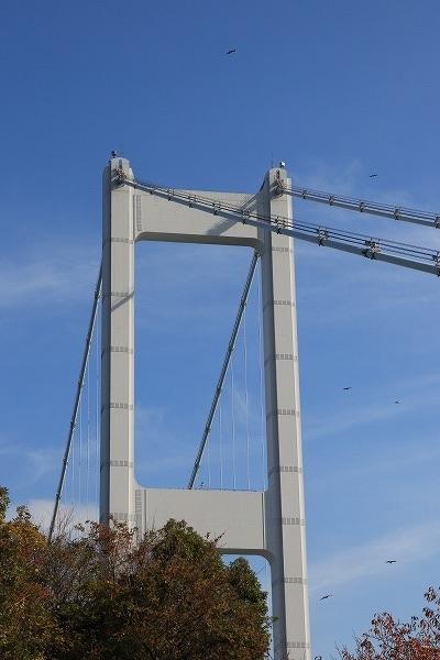 来島第三大橋 161203 06