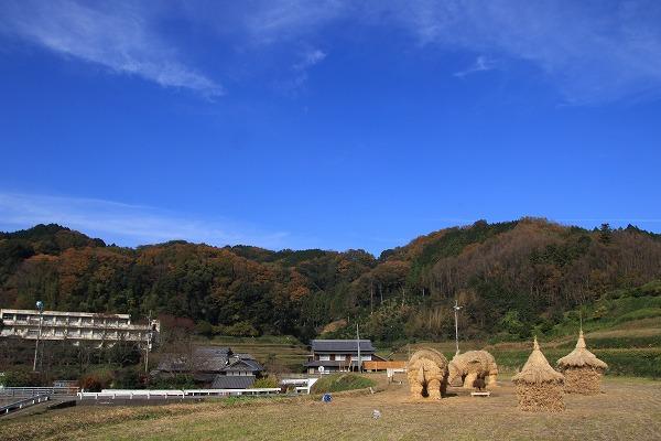 鈍川稲藁猪 161203 04