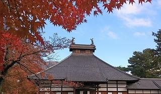 DSC_1230(1)長国寺