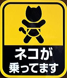 ネコが乗っています(1)