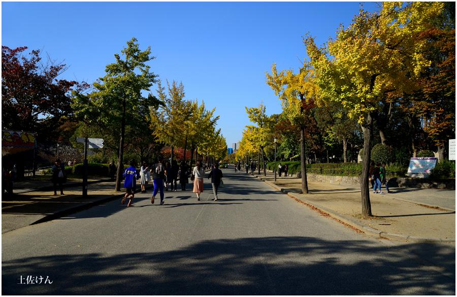 秋の大阪城1