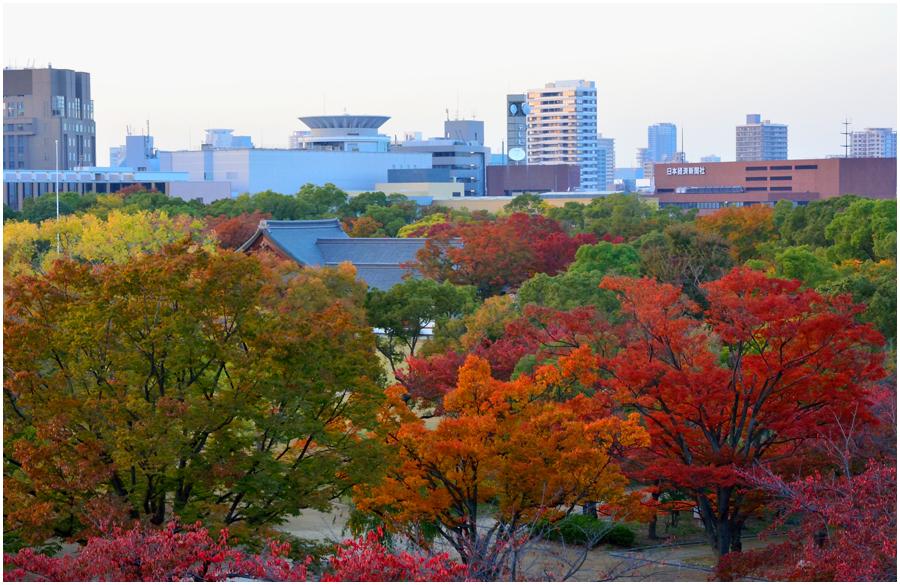 秋の大阪城・助手3