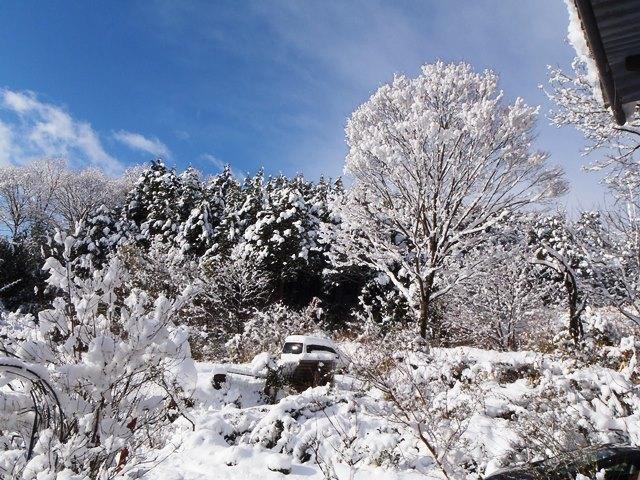2017-1-15積雪2