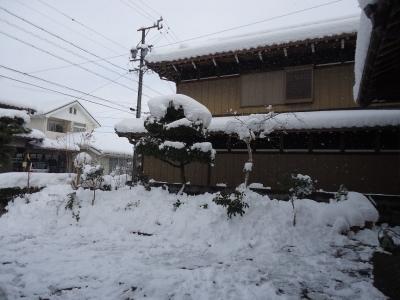 0115ooyuki.jpg