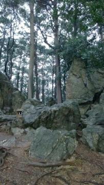 井伊神社07