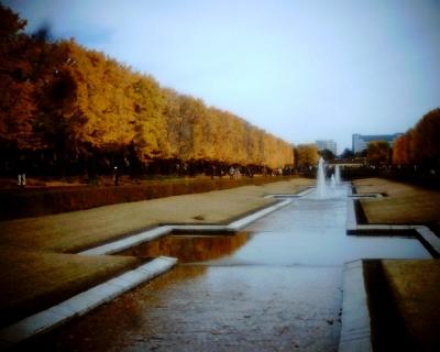 色づいたイチョウ並木2・昭和記念公園:Entry