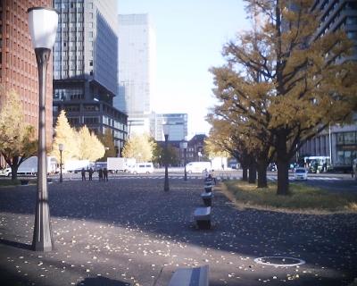 東京駅とイチョウの黄葉・行幸通り:R2