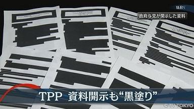 TPP関連の黒塗り文書