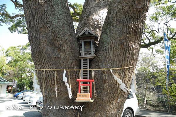 2016日3月21日加藤神社3