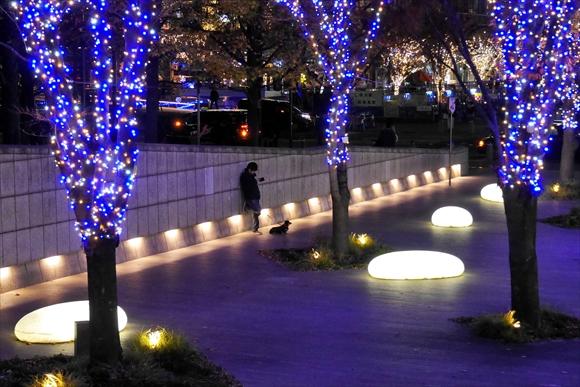 12月の街で-1_R