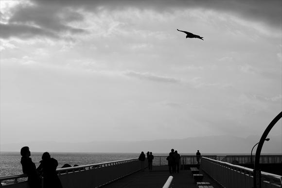 堤防-1_R