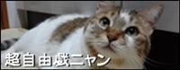 『超自由戯ニャン』