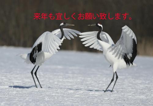 ブログ鶴田