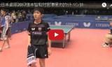張本智和VS宮澤僚太(男2回戦1)全日本選手権2017