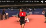 笹尾明日香VS長崎美柚(女Jr決勝戦)全日本選手権2017