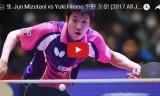 水谷隼VS平野友樹(準決勝)全日本選手権2017