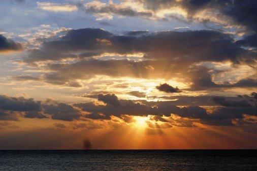 朝の陽12-31,7-46 P1060273