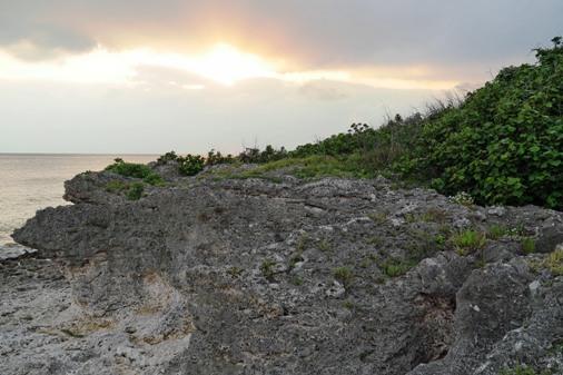 浜散歩d P1070415