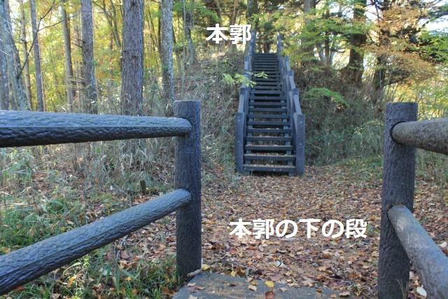 IMG_2145.jpg
