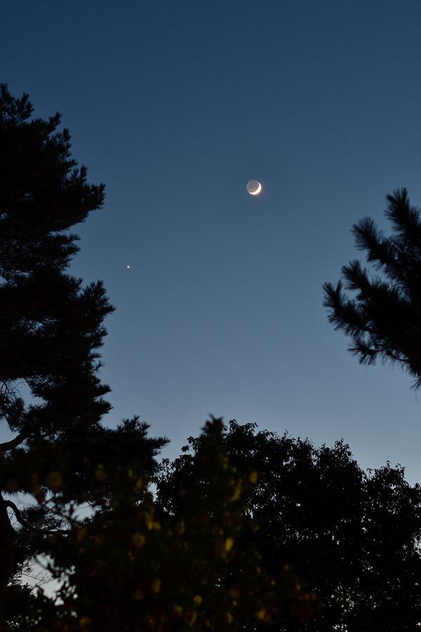 moon_venus_161203_3931_900.jpg