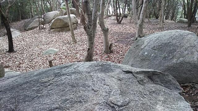 170201 操山⑥ ブログ用