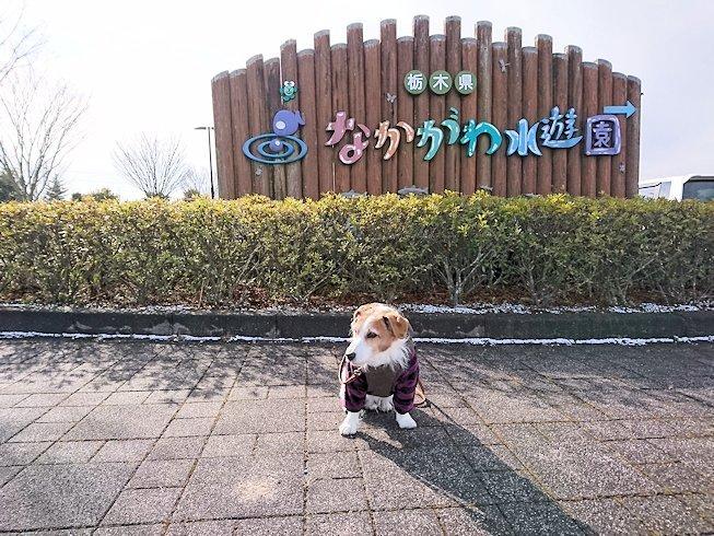 2017おでかけ037
