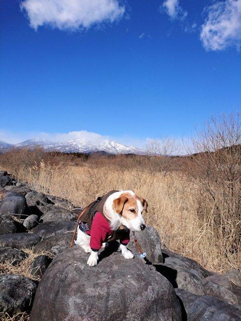 2017日光だいや川公園002
