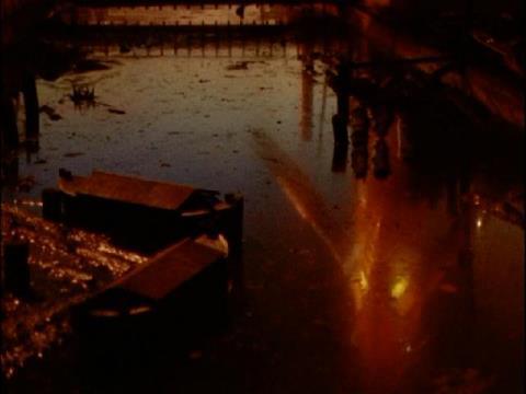 夕焼けの水面に映るメトロン星人