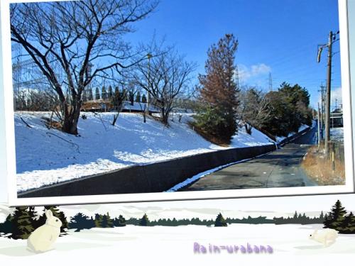 正午過ぎ道の雪は融けました