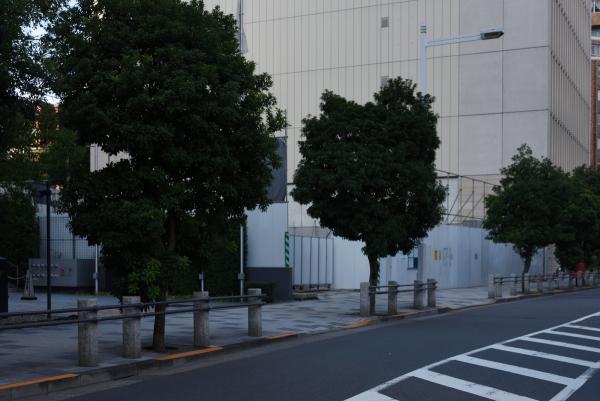 apa-kokkaigijido16110113.jpg