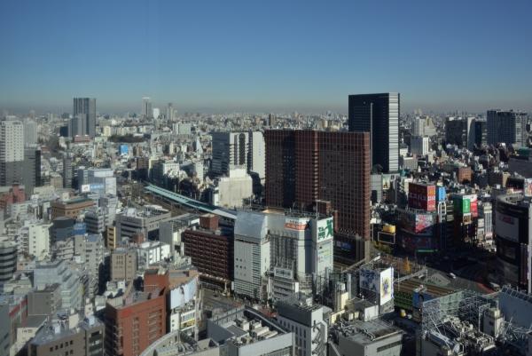 kabukicho16120787.jpg
