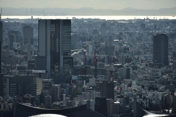 shibuya17010355.jpg