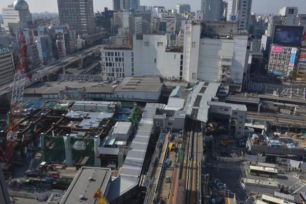 shibuya17010464.jpg