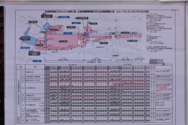 shibuya17010523.jpg