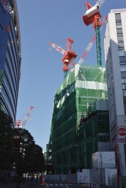 shibuya17010529.jpg