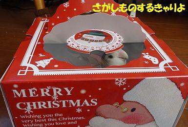 クリスマスぱーちーうりまろ9