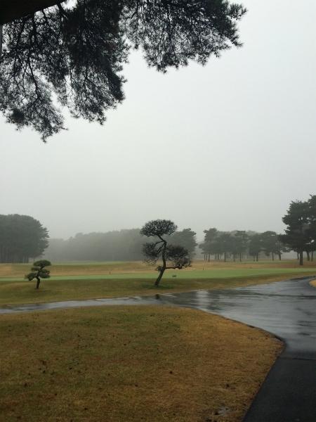 161201大利根雨