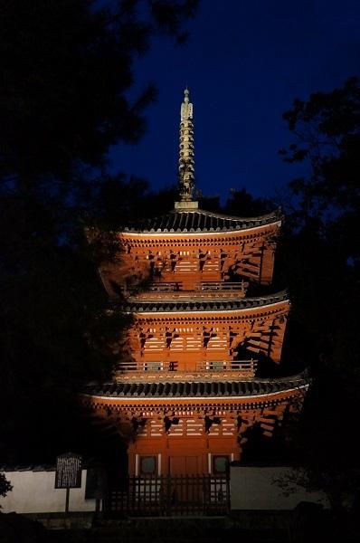 点灯式直後の宝福寺三重塔