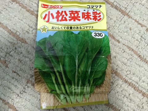 20161105 小松菜③