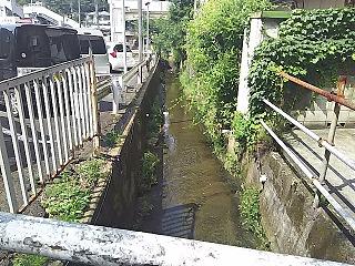 yomiuri1-2.jpg