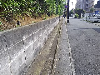yomiuri2-6.jpg