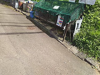 yomiuri2-9.jpg