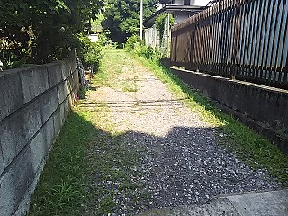 yomiuri3-17.jpg