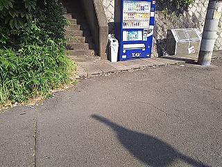 yomiuri3-8.jpg