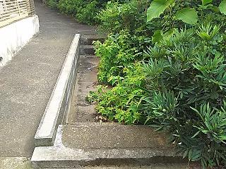 yomiuri4-12.jpg