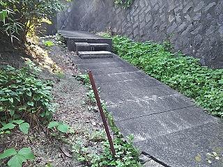 yomiuri4-2.jpg