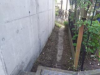 yomiuri4-24.jpg