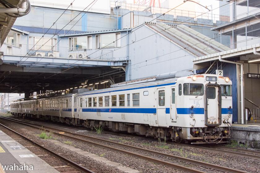 281116kagosima7-2.jpg